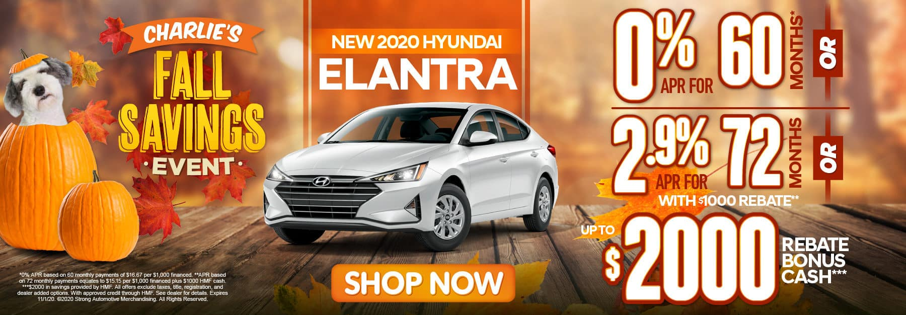 Elantra 0% APR for 60 months - click here to view inventory