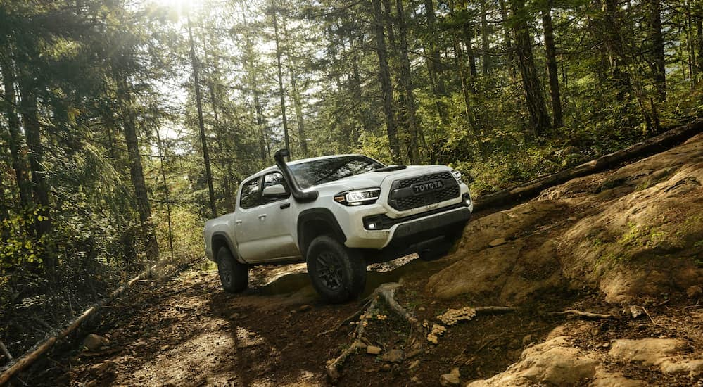 A white 2020 Toyota Tacoma TRD Pro is off-roading in the woods.