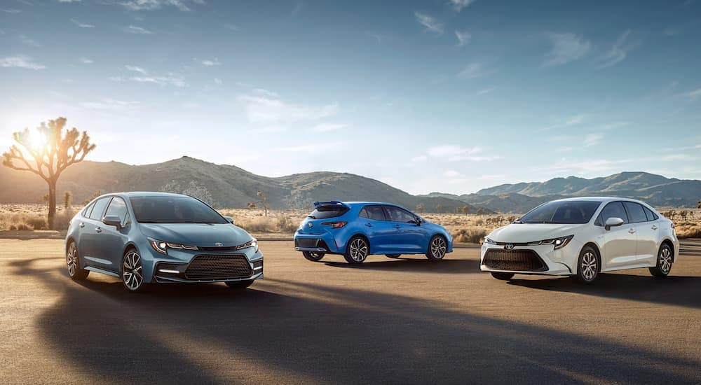 Three Toyota models, all 2020 Toyota Corollas, are parked in the desert.