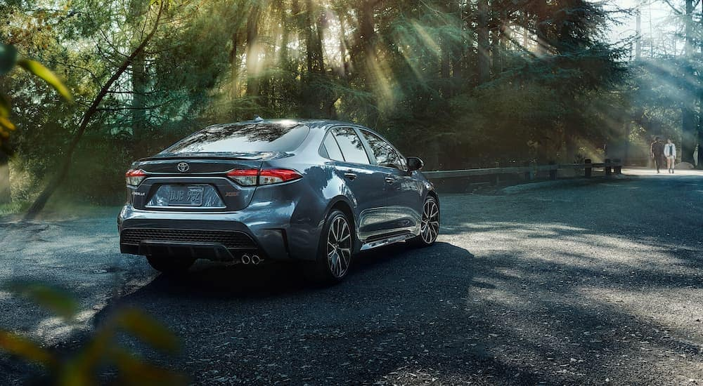 A dark grey 2020 Toyota Corolla XSE is driving on a tree-lined road near Indiana, PA.