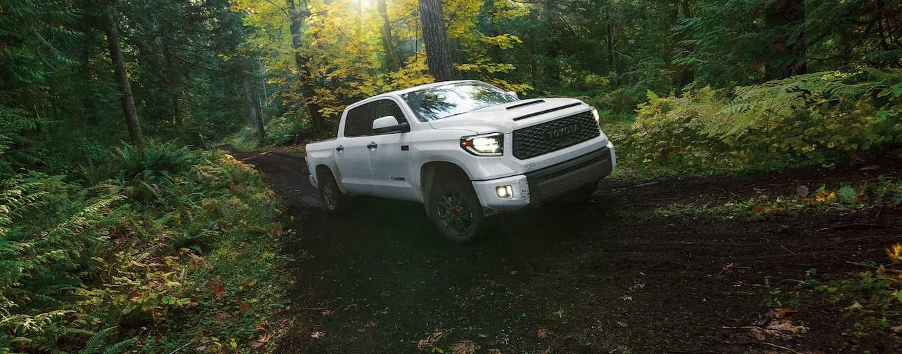 A white 2020 Toyota Tundra TRD is off-roading in the woods near Indiana, PA.