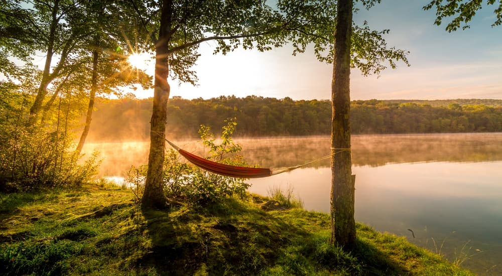 A hammock is hanging in front of a misty lake at sunrise.