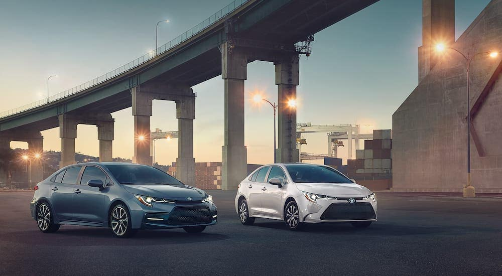 A blue and a white 2020 Toyota Corolla from a Toyota dealership near you are parked in front of a bridge.
