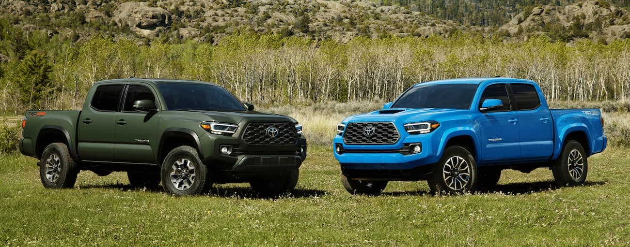 A green and a blue 2021 Toyota Tacoma are parked facing each other in the grass.