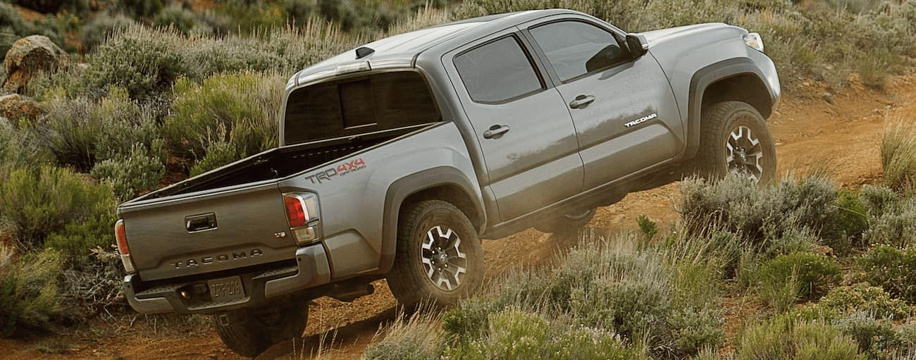 A grey 2021 Toyota Tacoma is off-roading on a dirt road uphill.