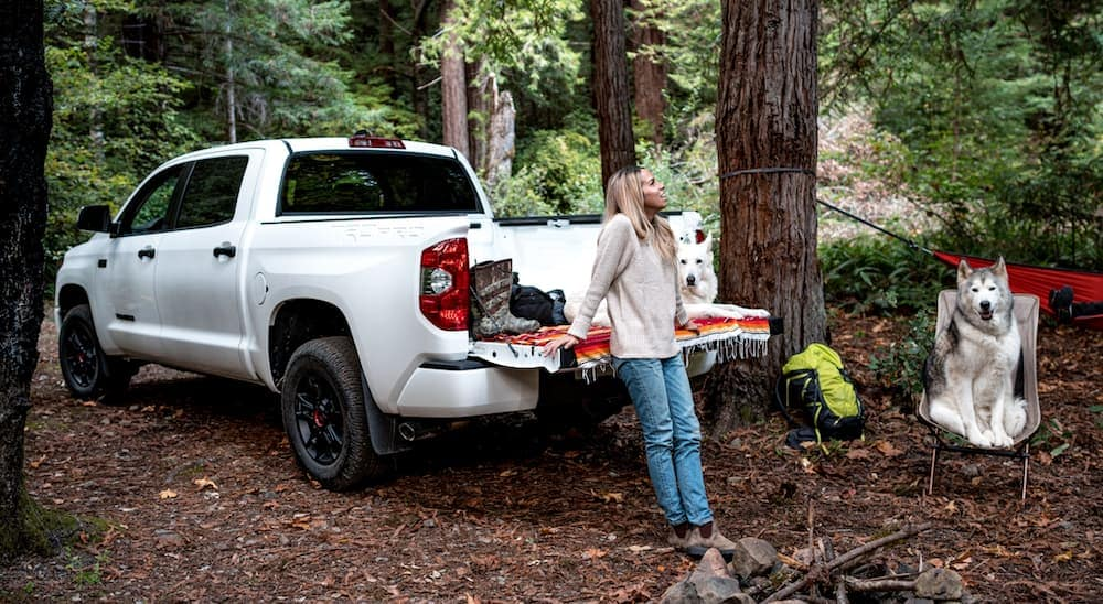 A woman is leaning on the tailgate of a white 2021 Toyota Tundra with her dogs next to it.