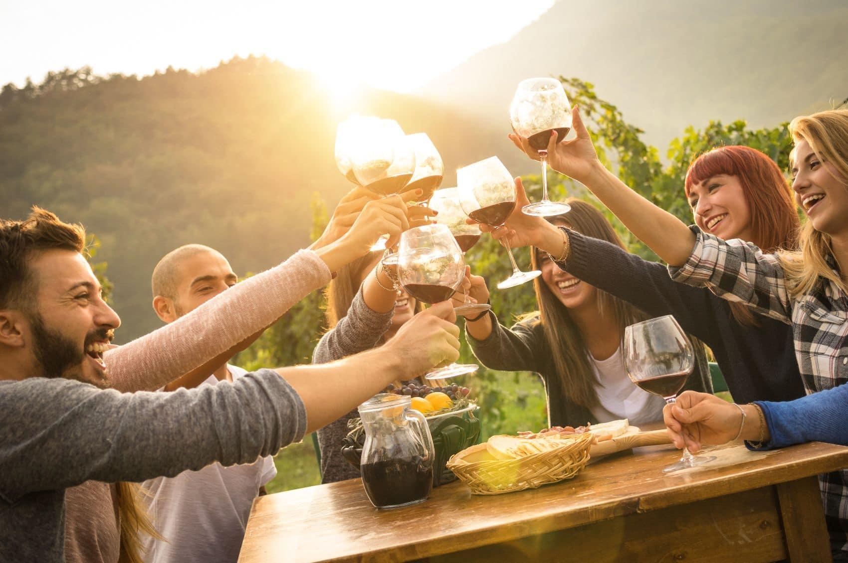 Wine Vineyard with Friends