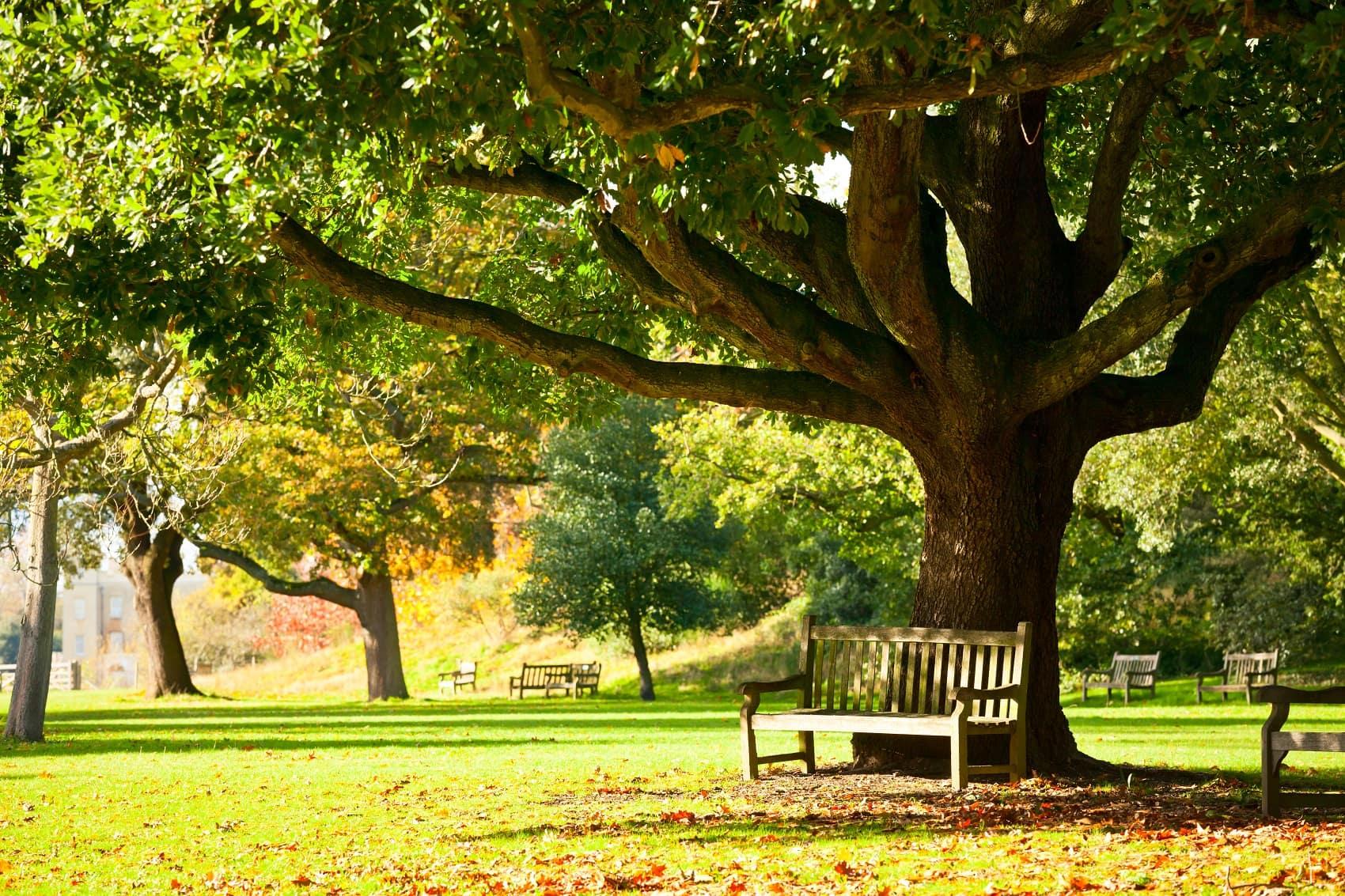 Fremont Ohio Park