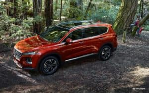 santa fe red in the woods