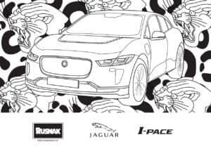Coloring IPACE