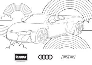 Coloring r8