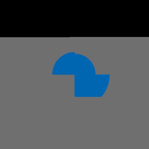 Rusnak BMW Logo