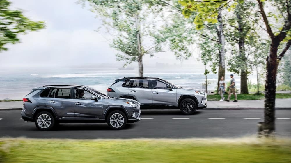 2020 Toyota RAV4 models on a coastal road