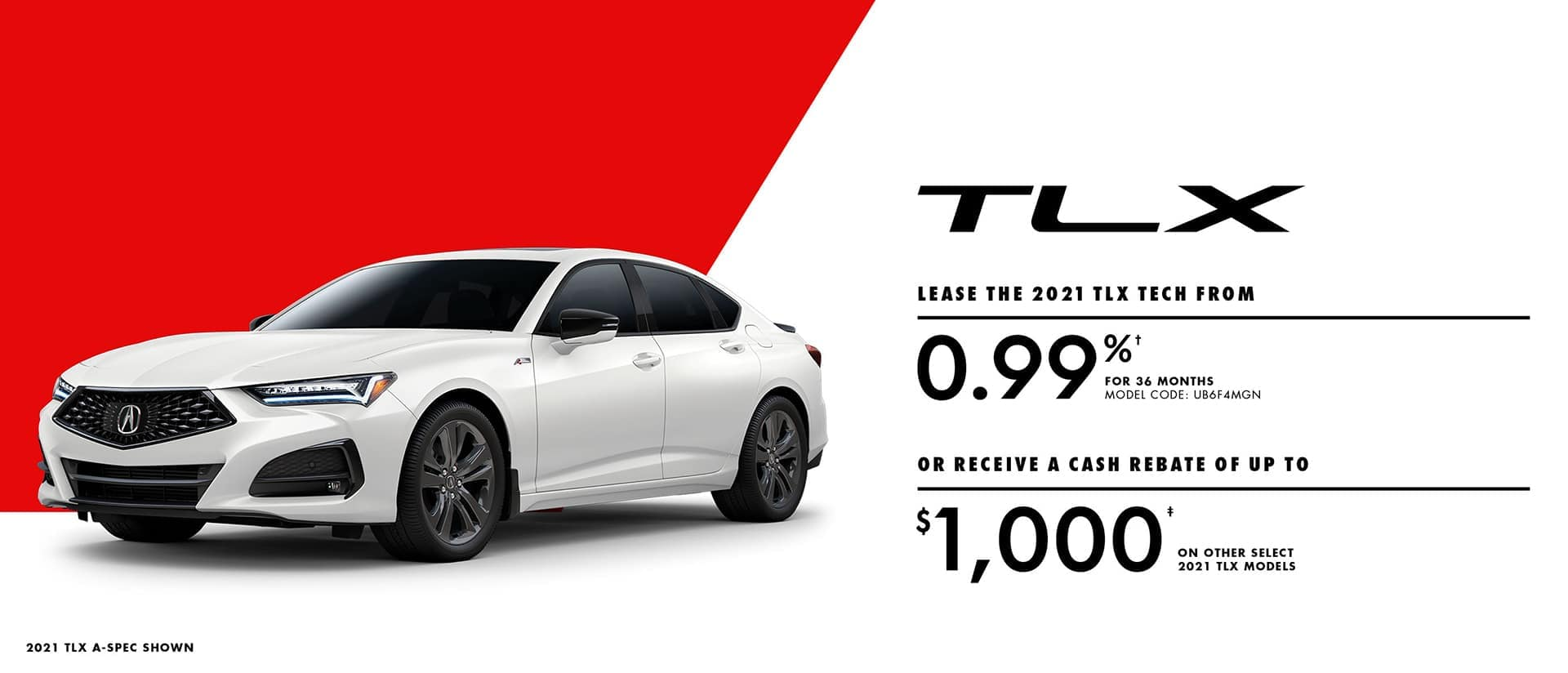 TLX-Banner-1